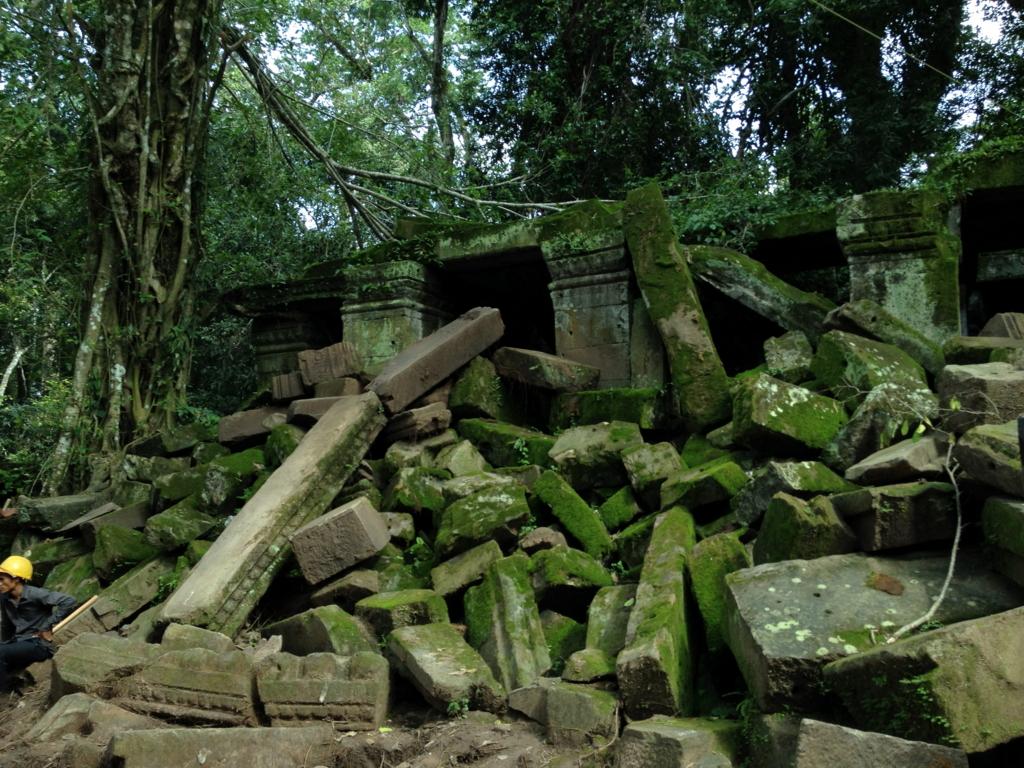 カンボジア シェムリアップ 「タ プローム」遺跡 青々とした苔