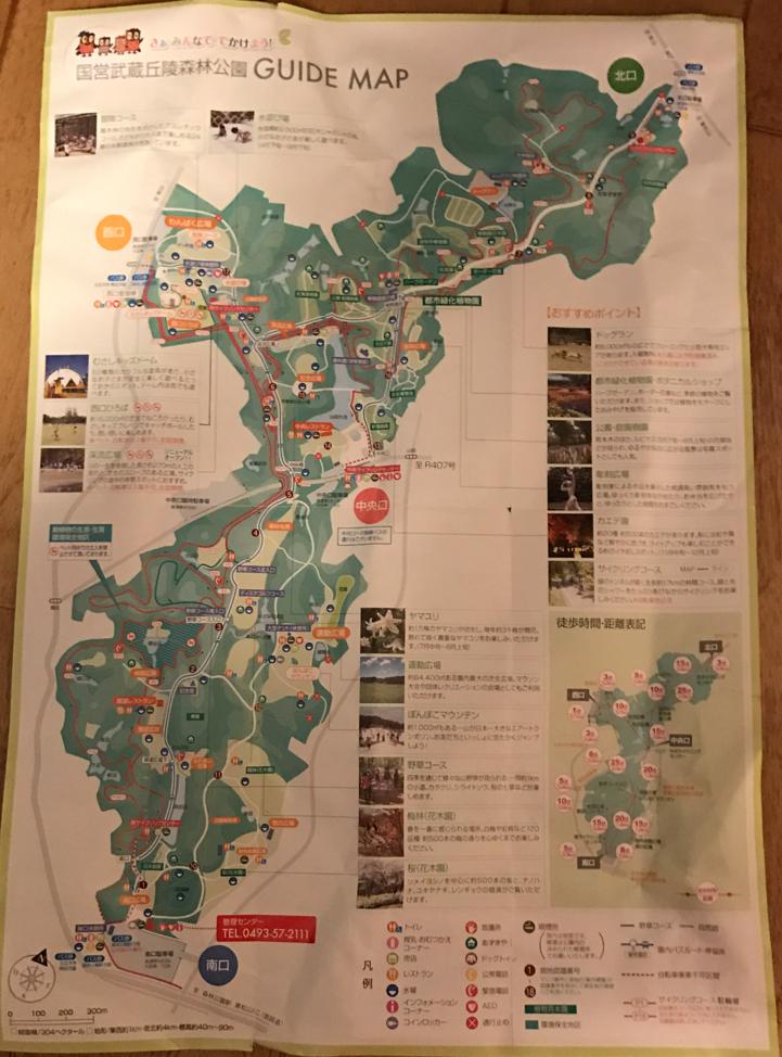 国営武蔵丘陵森林公園 マップ