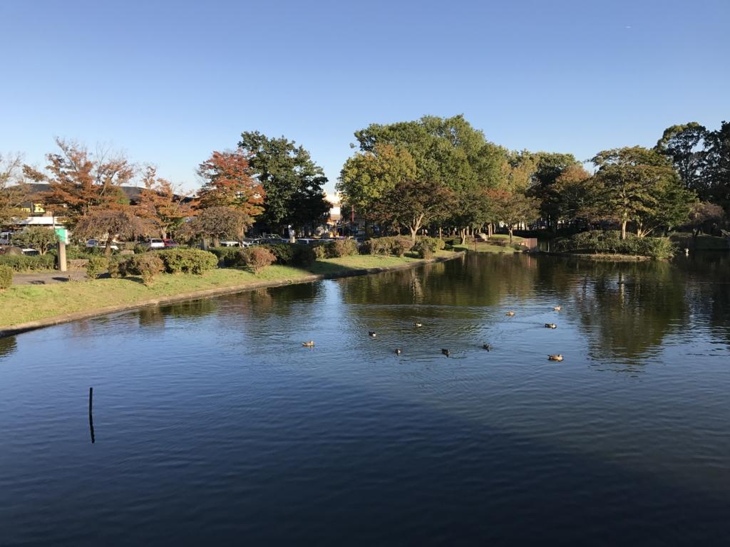 茨城県つくば 公道セグウエイツアー 休憩場所 松見公園
