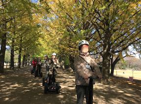 昭和記念公園 セグウエイツアー 銀杏並木を通過