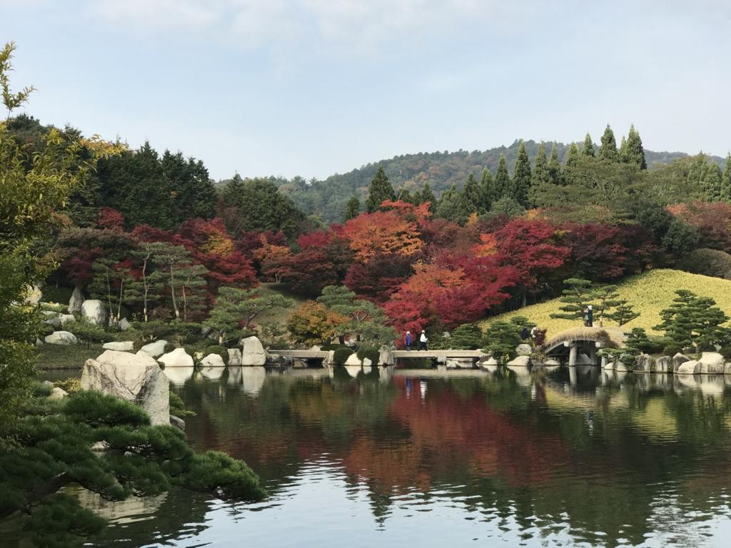 広島県 三景園 もみじ 入り口付近から 大池越しに