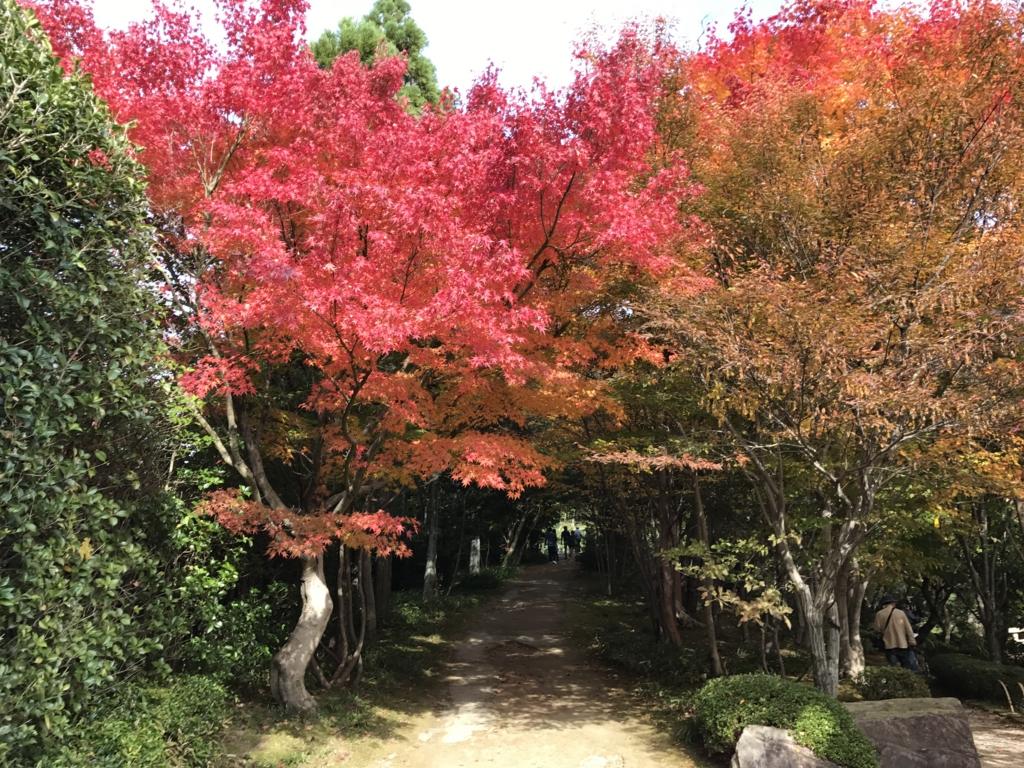 広島県 三景園 もみじ谷付近 歩道
