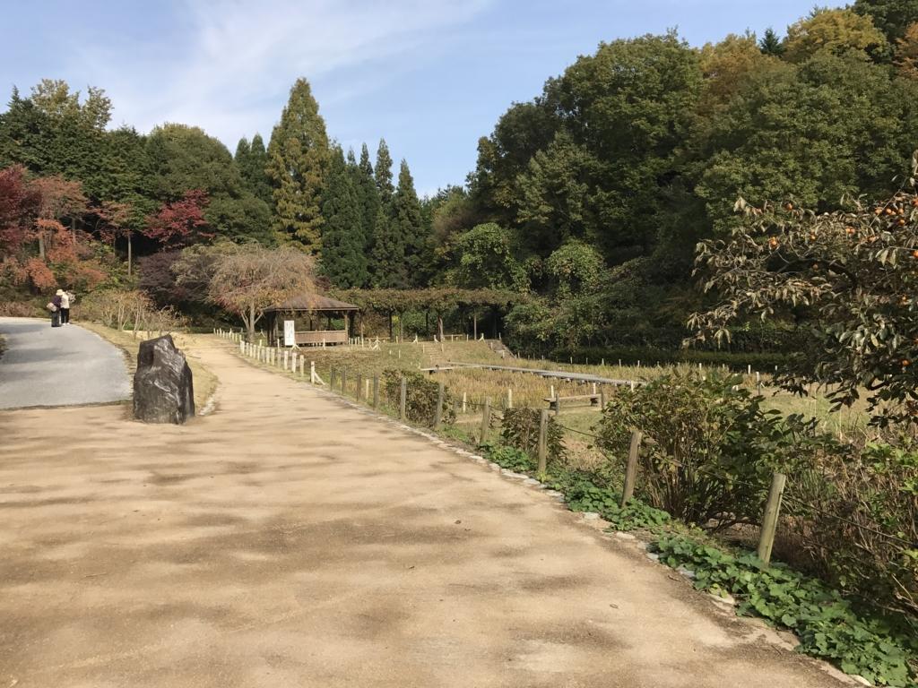 広島県 三景園 あじさい園周辺