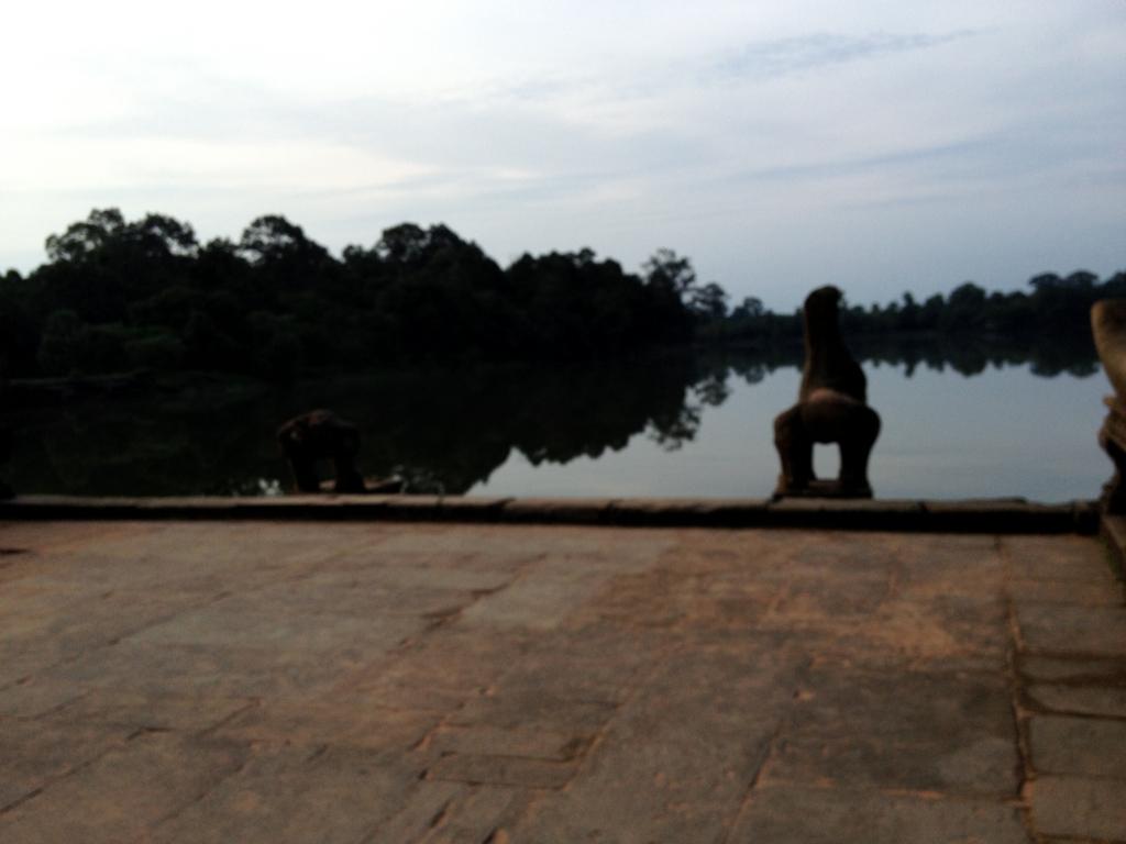 カンボジア シェムリアップ 「アンコールワット遺跡」環濠土手道 いろいろな模様