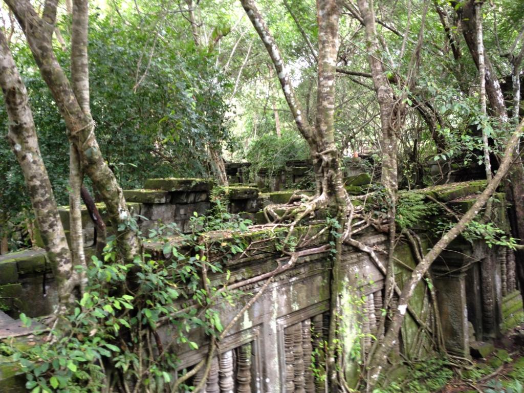 カンボジア「ベンメリア遺跡」回廊上部