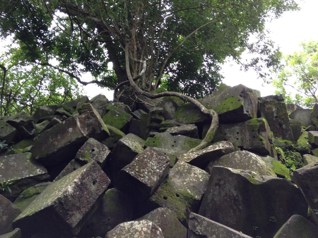 カンボジア「ベンメリア遺跡」崩れた遺跡の上に巨木