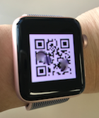 iPhone ANA アプリ Watch で チェックイン...