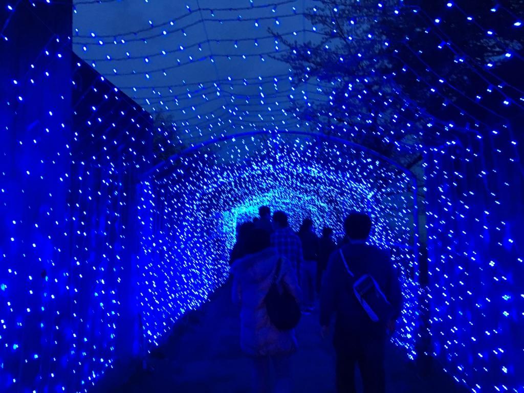 「さがみ湖イルミニオン」光のトンネル
