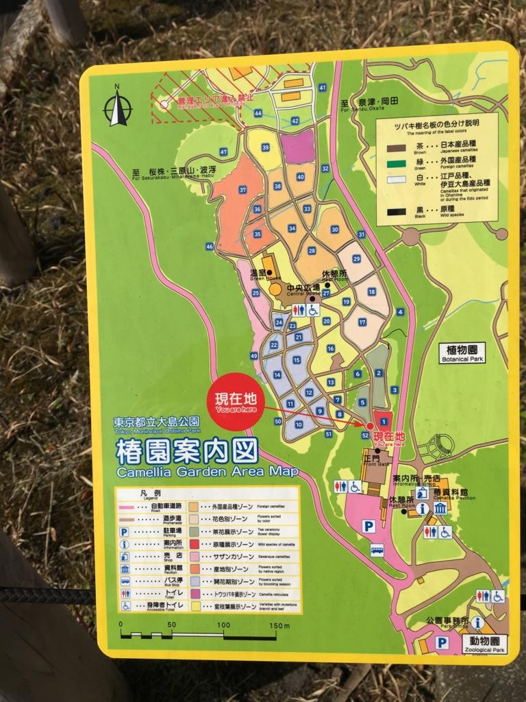 伊豆大島 椿園 マップ