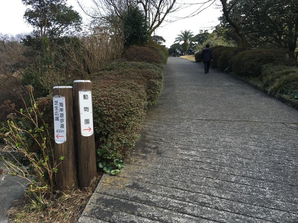 伊豆大島 動物園へ