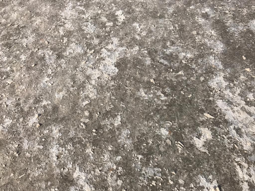 デスバレー国立公園 Bad Water 塩の道 UP
