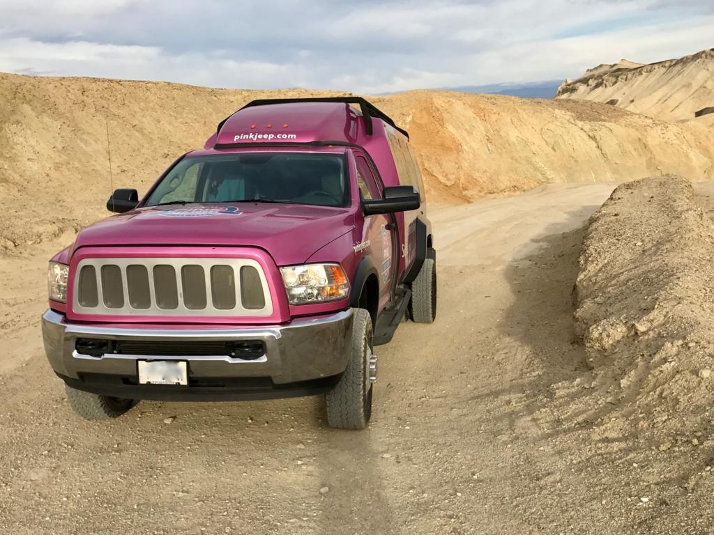 「ピンクジープ車の快適バンで行く、デス・バレー国立公園観光」ピンクジープ