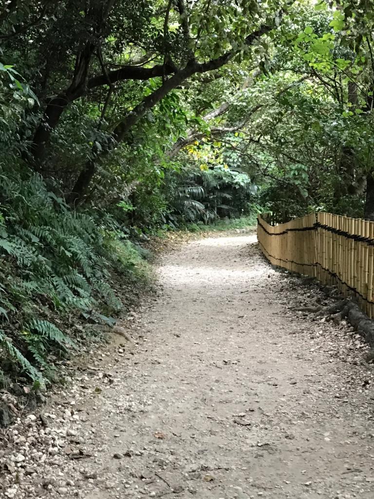 「斎場御嶽」「緑の館・セーファ」近くの 参道
