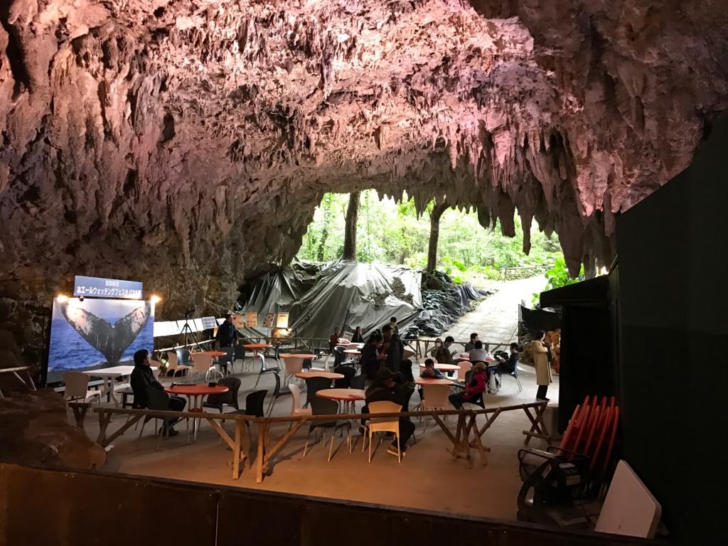 「ガンガラーの谷」CAVE CAFE 一番奥からの撮影