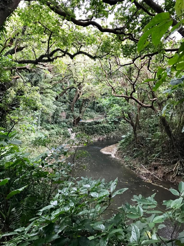 「ガンガラーの谷」川