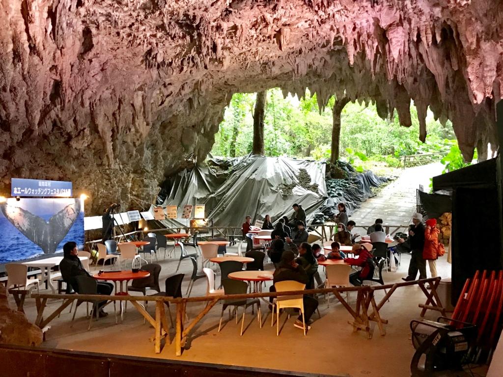 「ガンガラーの谷」CAVE CAFE(サキタリ洞遺跡)