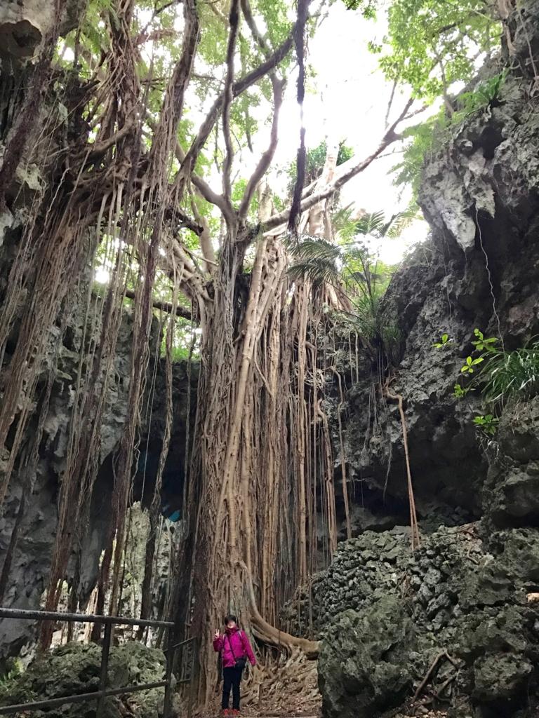 沖縄県「ガンガラーの谷」  ウフシュガジュマル と記念撮影