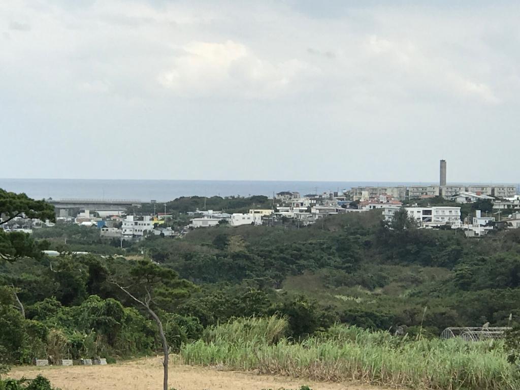 沖縄県「ガンガラーの谷」ツリーテラス から 遠方 海の風景