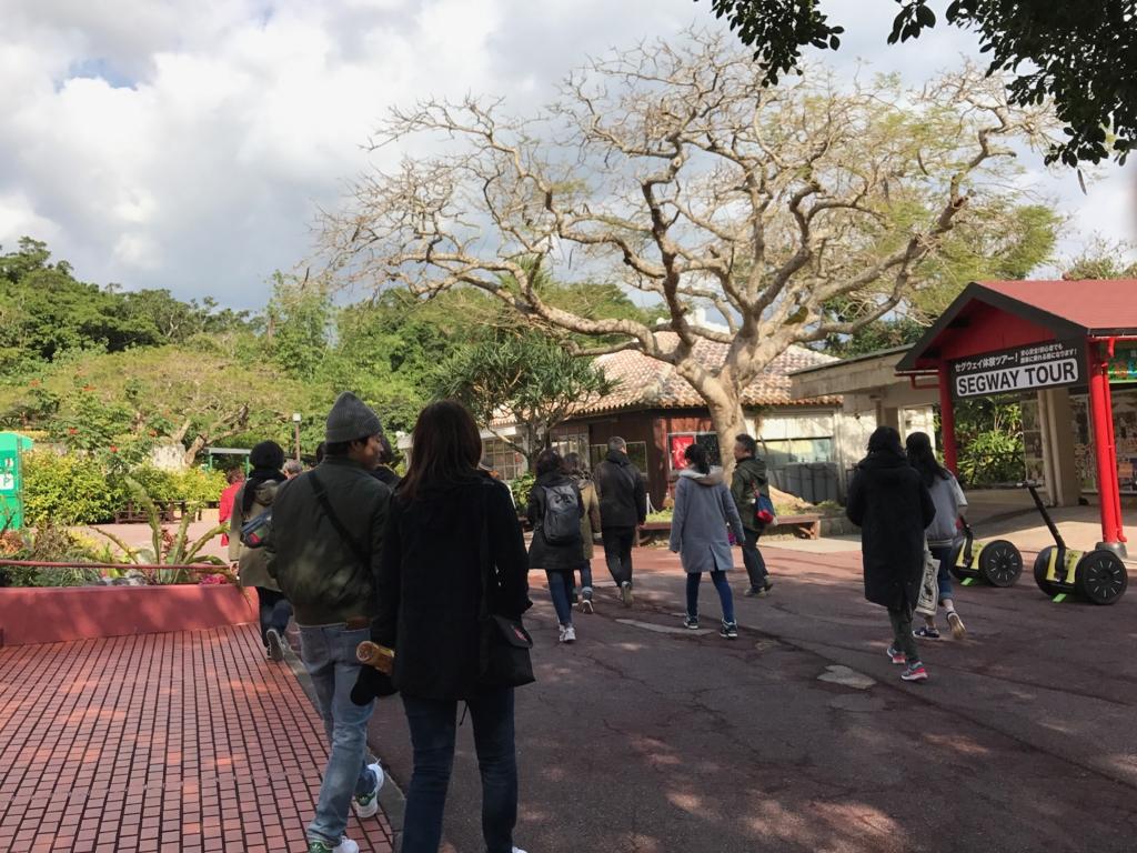 沖縄県「ガンガラーの谷」武芸洞 出口を通って 王泉洞へ