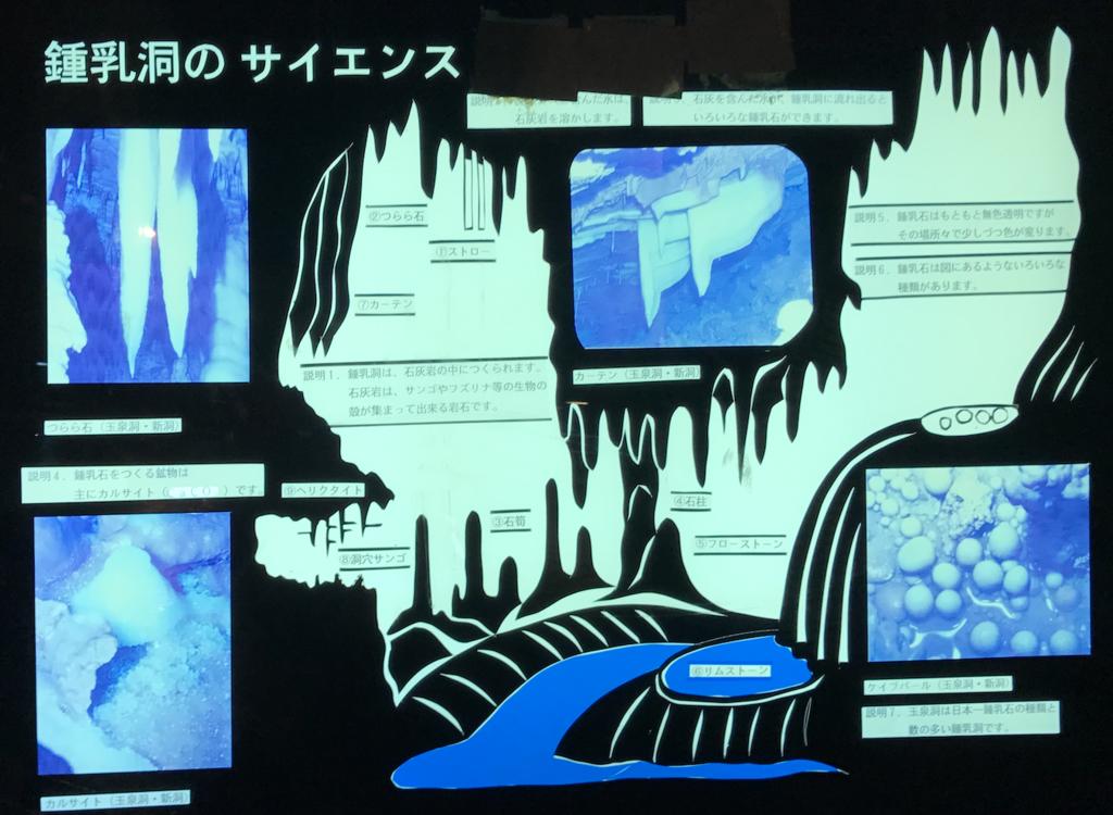 沖縄県「おきなわワールド」玉泉洞 いろいろな鍾乳石の説明