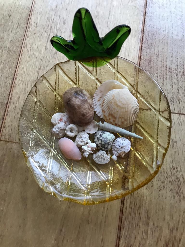 沖縄県 「波の上ビーチ」砂浜 拾った貝殻