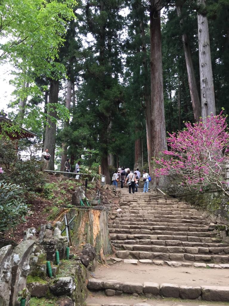 奈良県 室生寺 上へ上へ