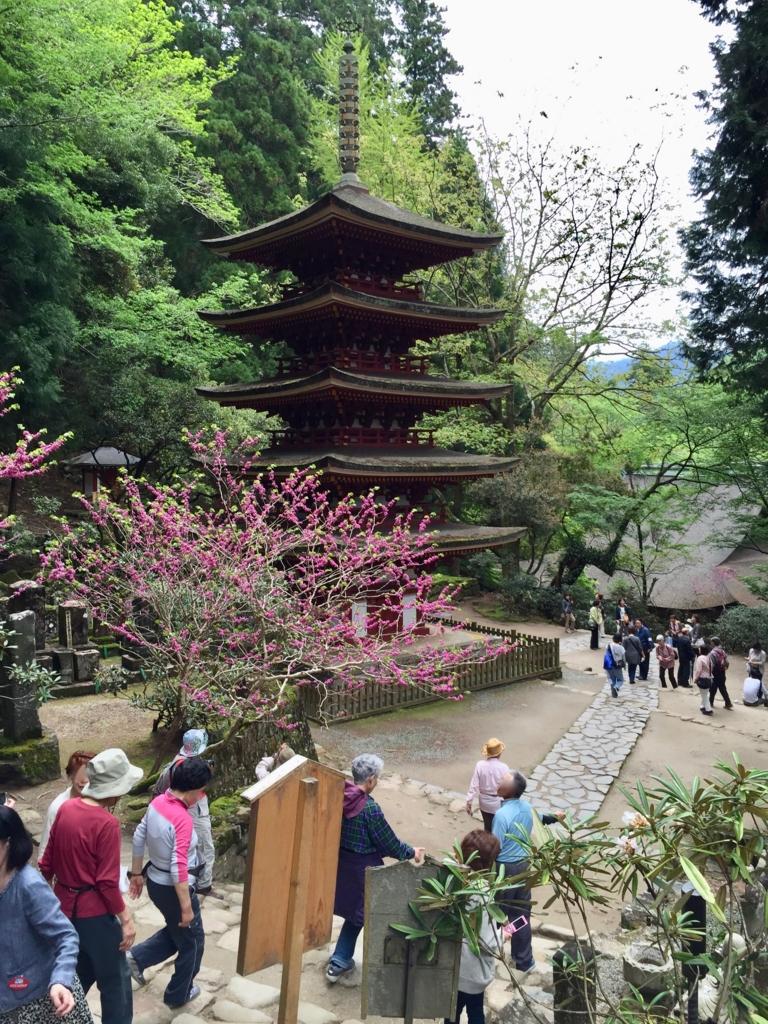 奈良県 室生寺 五重の塔 付近