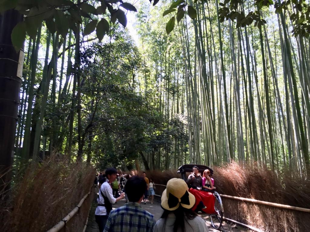ゴールデンウイークの嵐山 竹林 横柄に人を搔きわける人力車