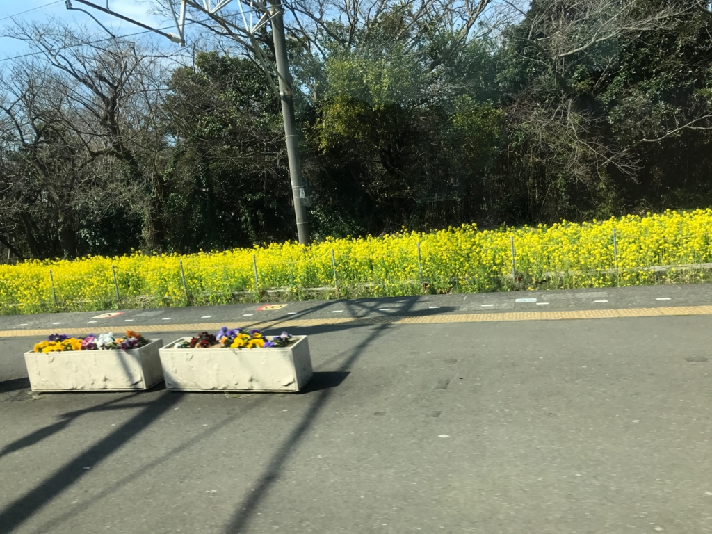 JR上総湊駅 3月 新宿さざなみ号の車窓より