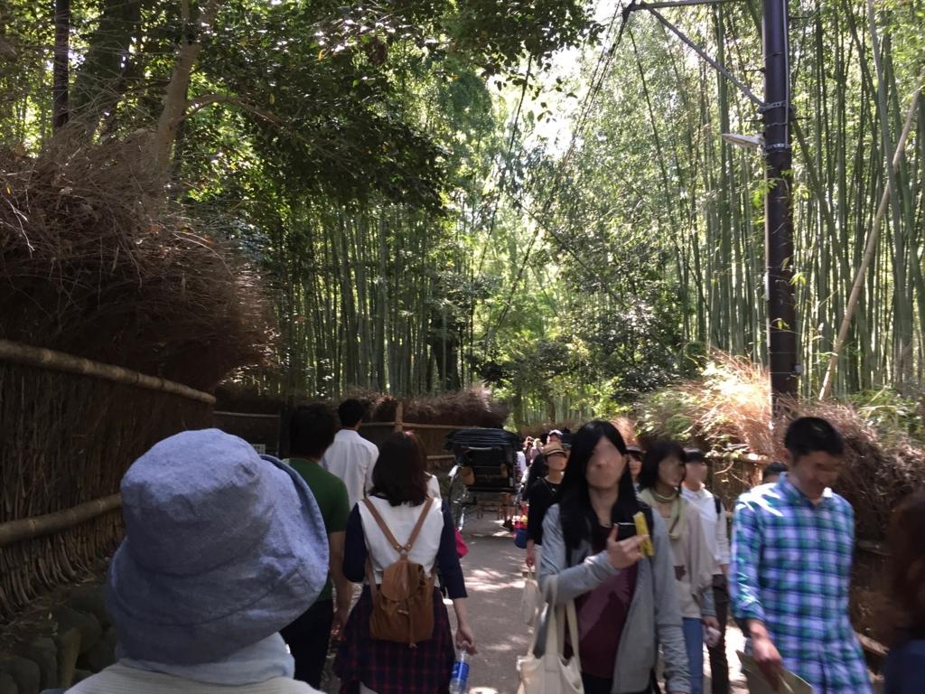 ゴールデンウイークの嵐山 竹林 入口