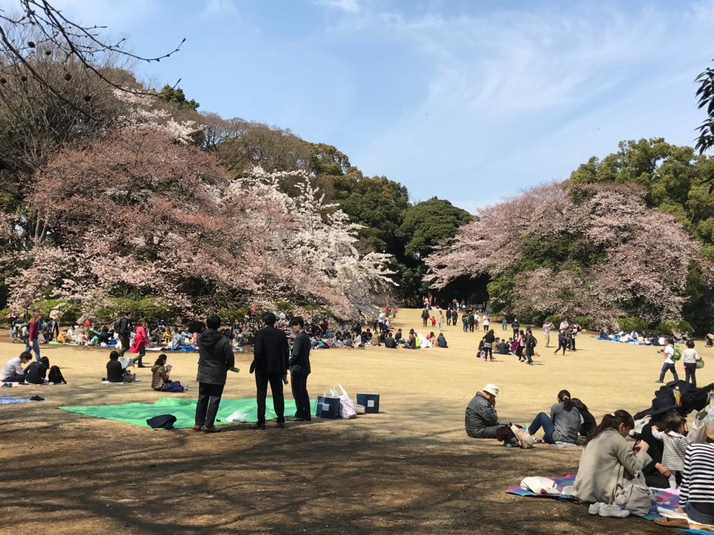 東京都新宿区 新宿御苑 まだ満開でない桜もチラホラ