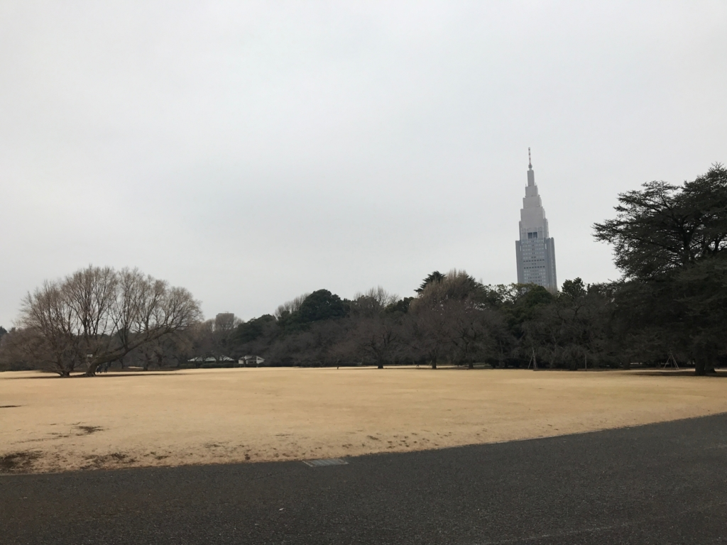 東京都新宿区 新宿御苑 人がいない広場(2月撮影)