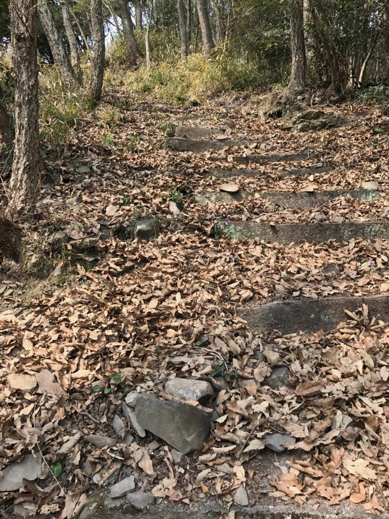 香川県 佐柳島(ねこ島)「大天神社」から さらに上への階段 さらに積もった落ち葉