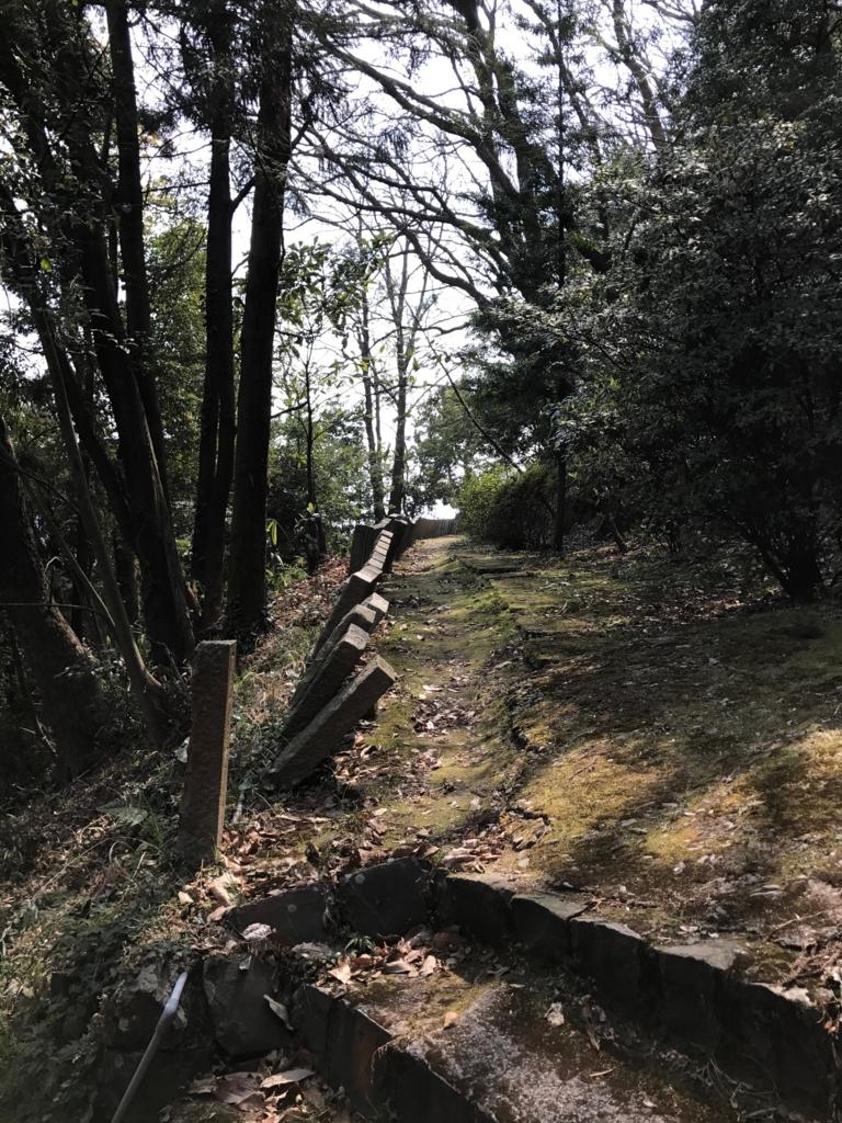 香川県 佐柳島(ねこ島)「大天神社」横の道