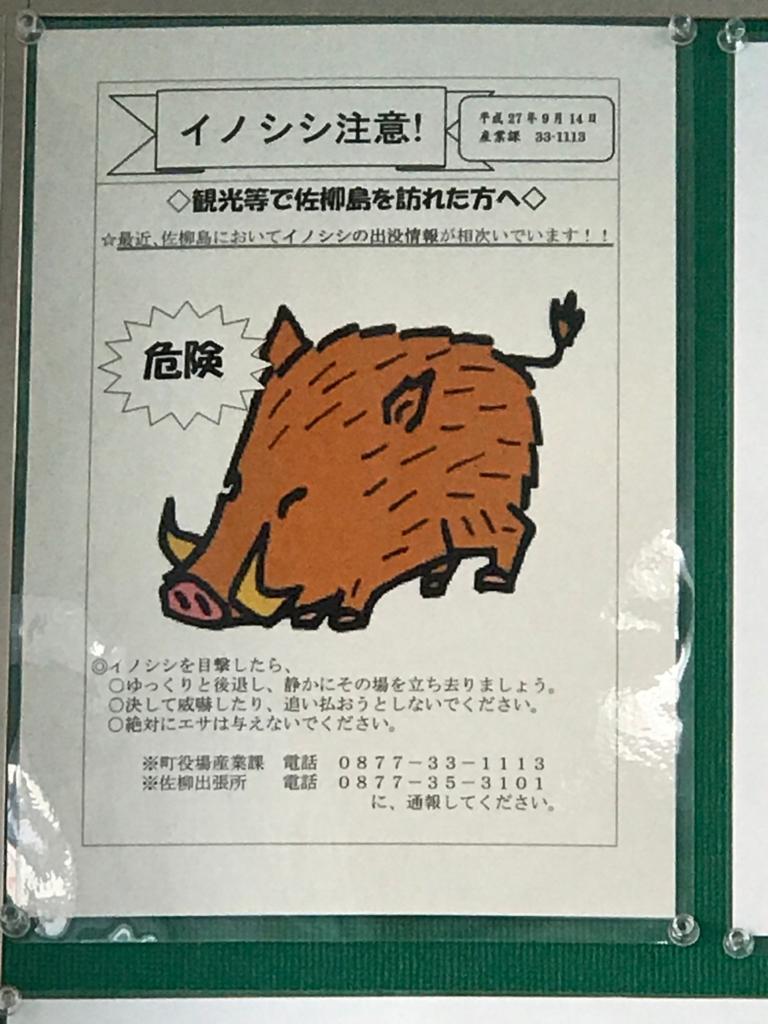 香川県 佐柳島(ねこ島)フェリー 船内 「イノシシ注意!」のポスター