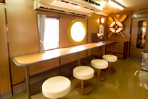 観光快速列車「瀬戸内マリンビュー」自由席 カウンター席