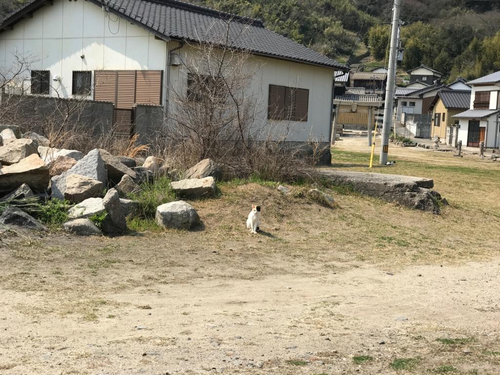 香川県 佐栁島(ねこ島)静まり返っている 本浦集落