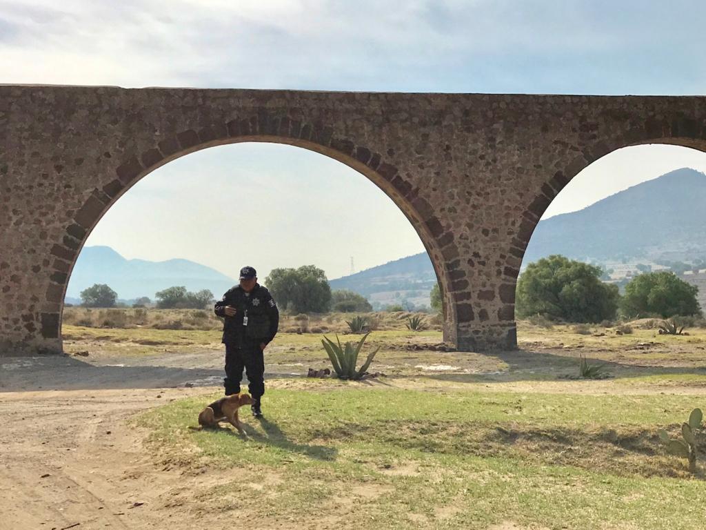 メキシコ 世界遺産 テンプレケ水道橋 1匹の子犬 と POLICE