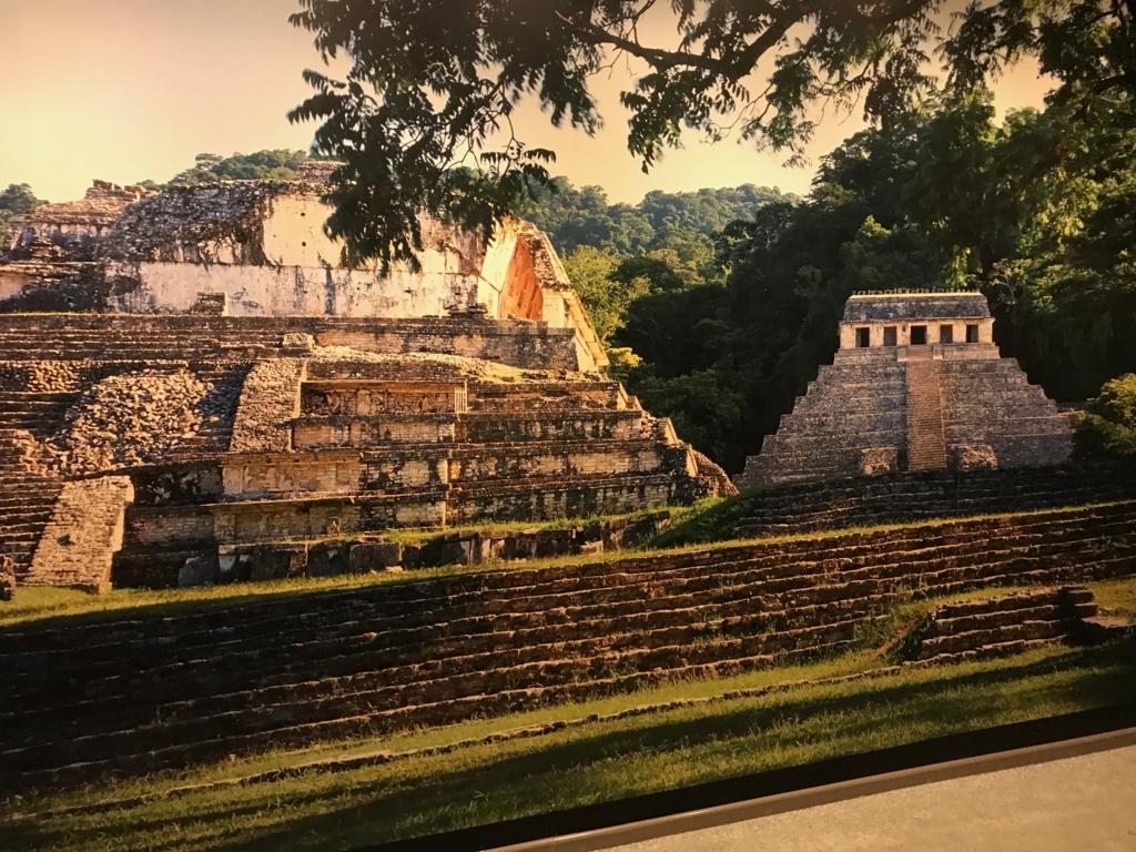 メキシコシティ「国立人類学博物館」パレンケ遺跡 風景
