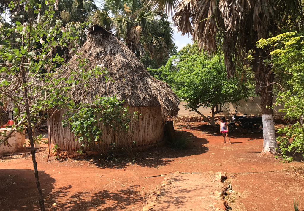 メキシコ サンタ・エレーナ村 マヤ人末裔の方の家 庭