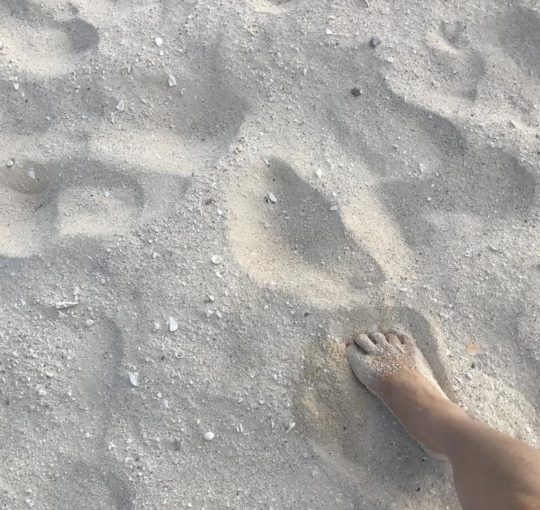 メキシコ、カンクン「クリスタル グランド プンタ カンクン」ホテル ビーチ 白い柔らかい砂