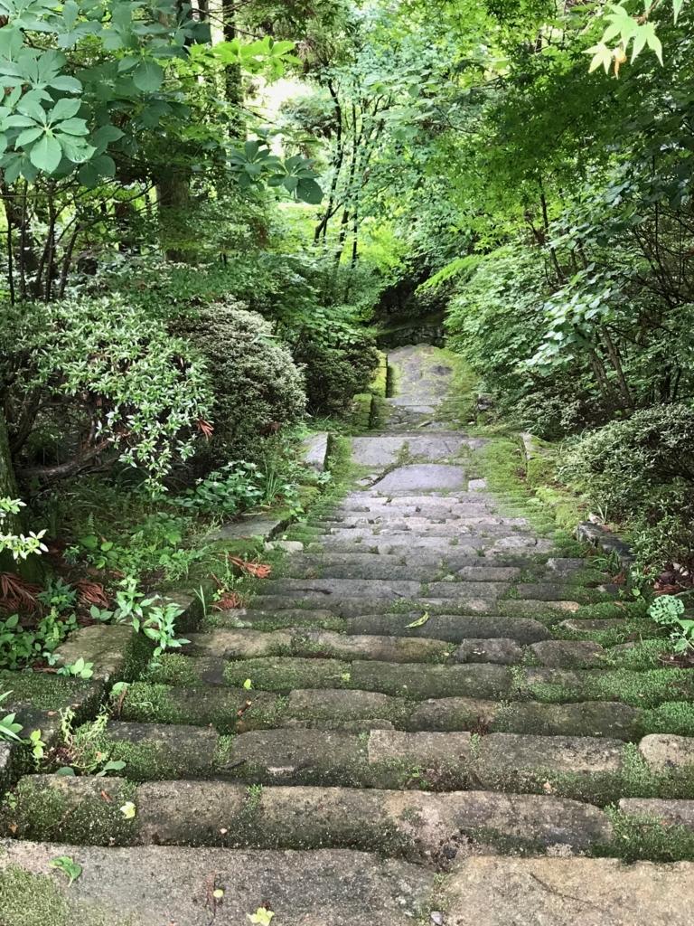 広島県 三景園 苔むした階段道