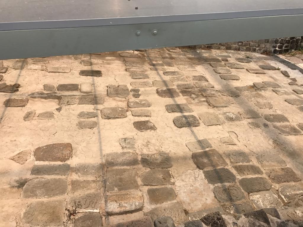 メキシコ ソチカルコ遺跡 動物タイルの道