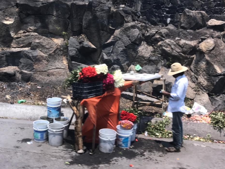 メキシコ クエルナバカ 薔薇売り