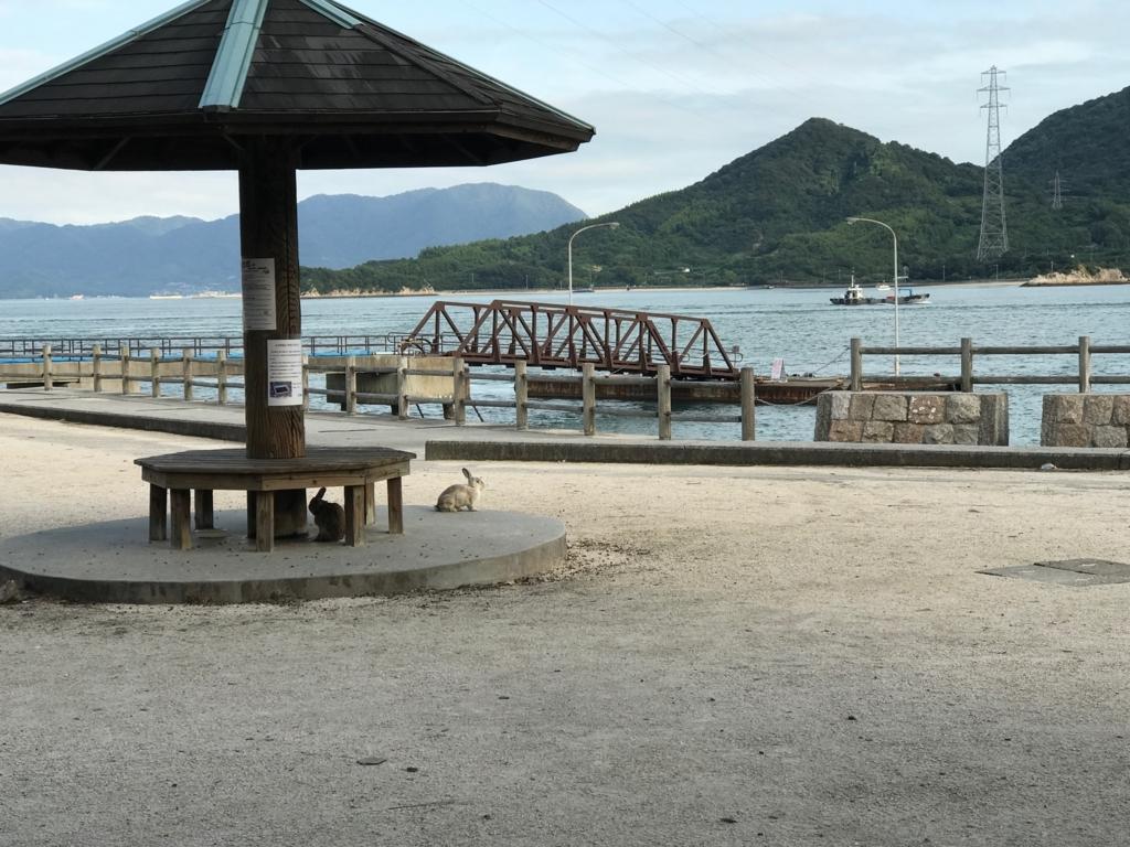 広島県 うさぎ島(大久野島) 第1桟橋付近 隣の小久野島