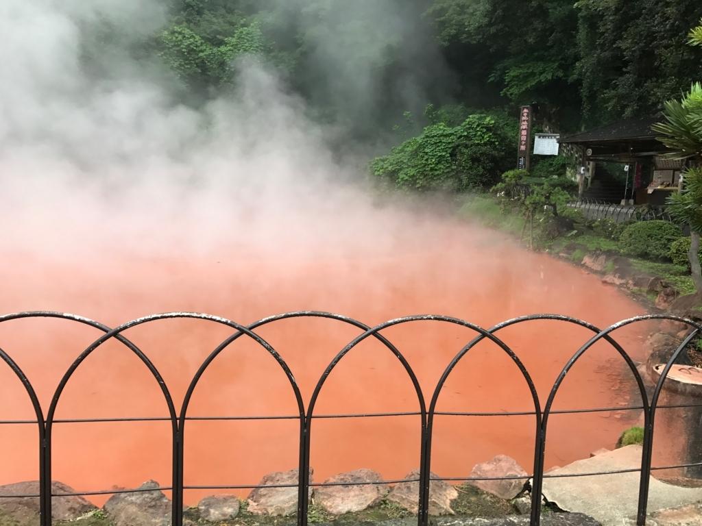 別府温泉「地獄めぐり」血の池地獄