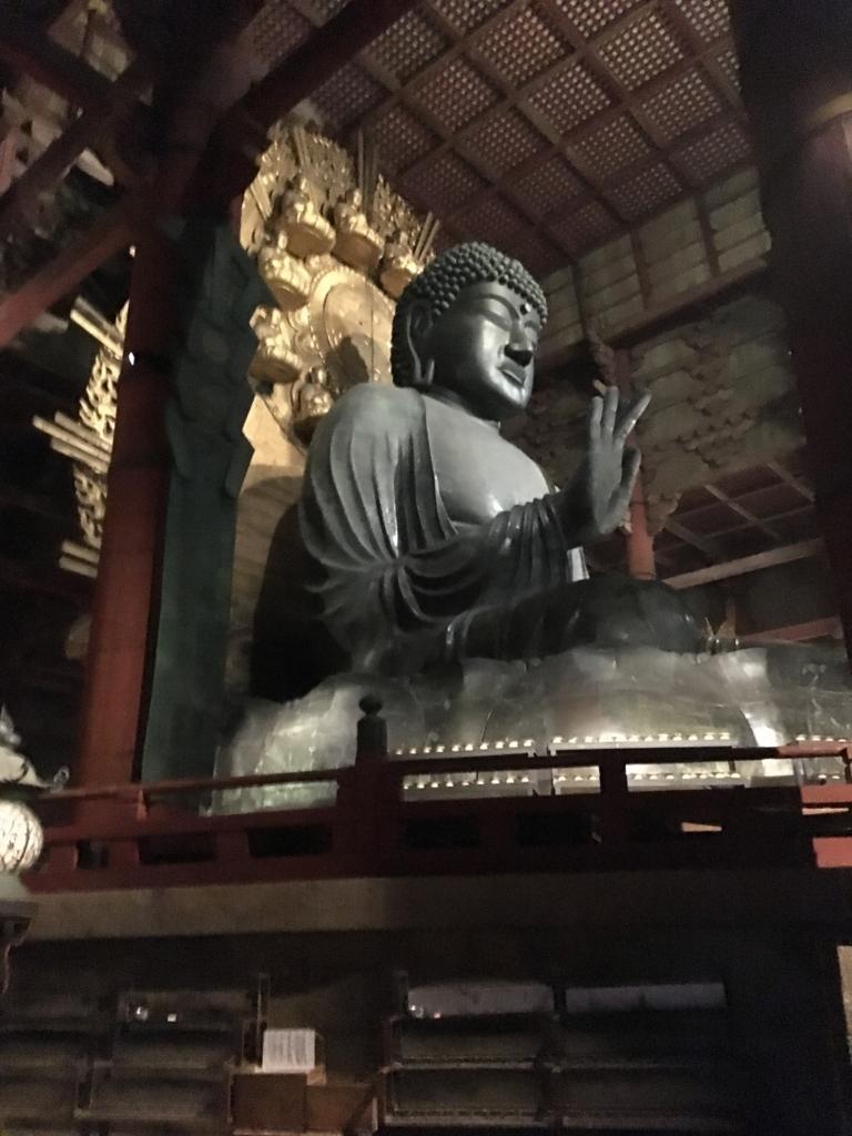 奈良県東大寺「大仏殿夜間参拝」大仏様 横顔