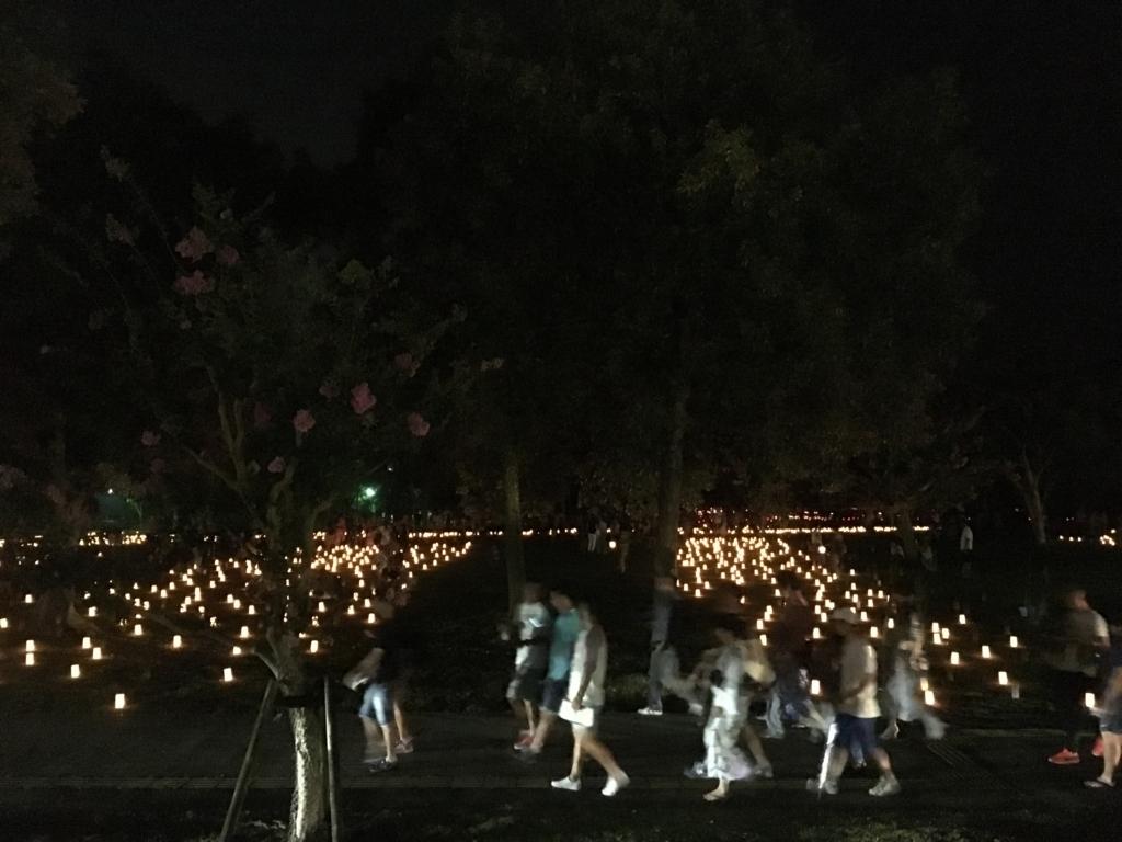 奈良県東大寺「大仏殿夜間参拝」ライトアップ 帰りの車窓の風景