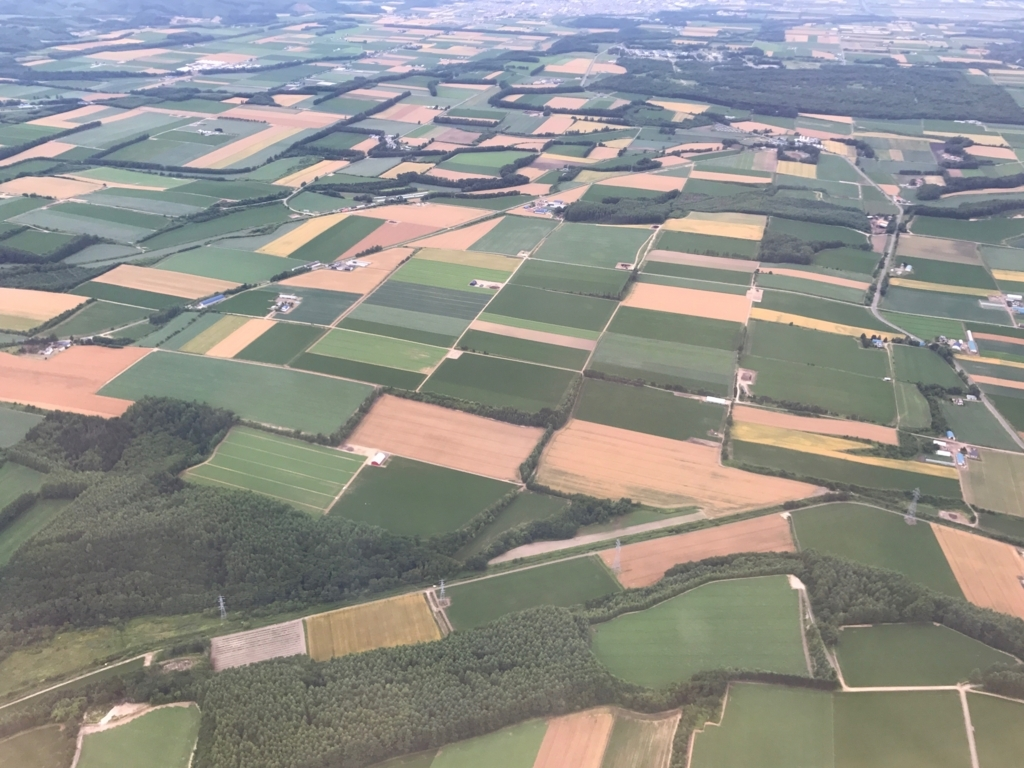 北海道 女満別空港周辺 上空写真 いろいろな大きな畑