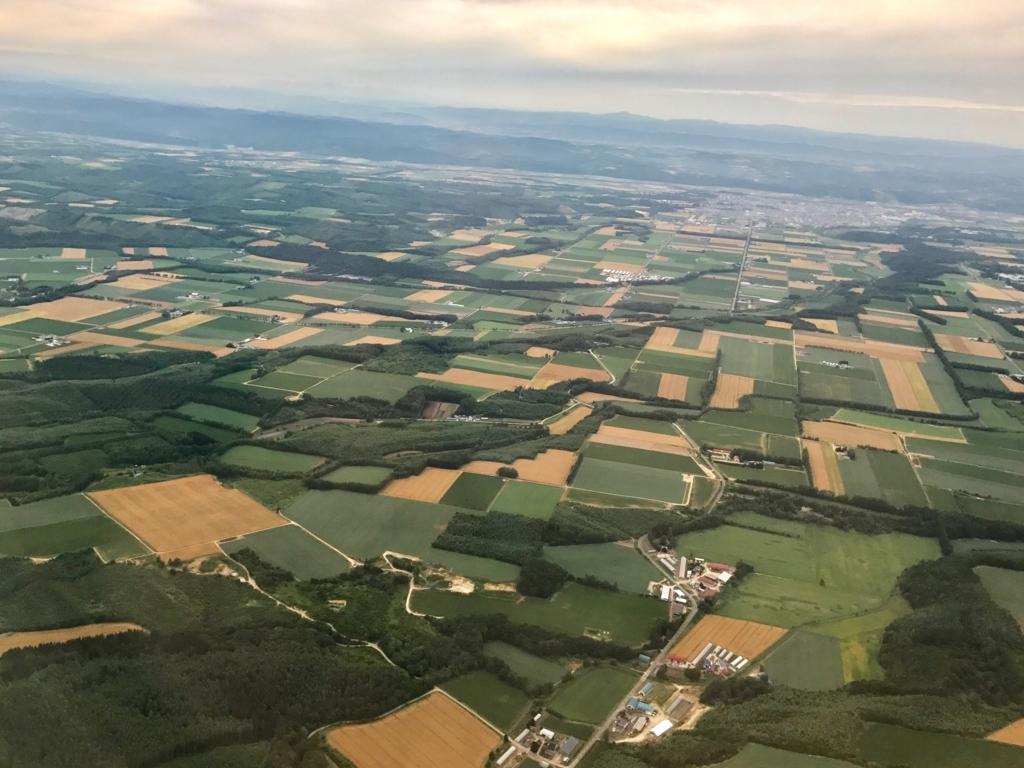北海道 女満別空港周辺 上空写真 大規模畑作地域